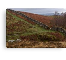 Brecon Beacons Stone Wall Canvas Print