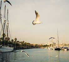 Barcelona Port and Seagulls by PatiDesigns