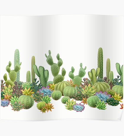 Milagritos Rainbow Cacti on White Background Poster