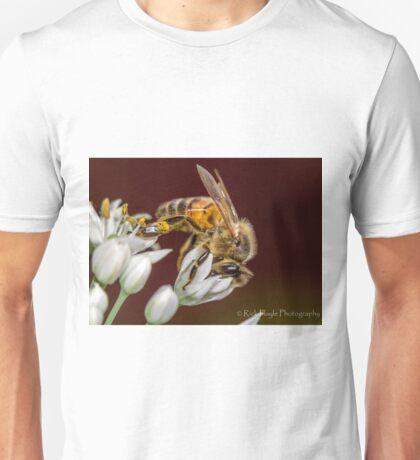 Beewonder T-Shirt