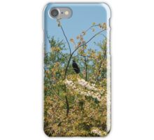 The Summer At Perry Barr 1 iPhone Case/Skin