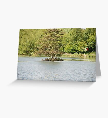 The Summer At Perry Barr 2 Greeting Card
