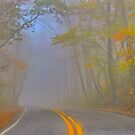 Foggy Morning on the Arkansas Scenic Pig Trail Bypass by NatureGreeting Cards ©ccwri