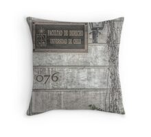 Faculty of Law - Santiago - Grunged Filter Throw Pillow