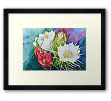 Dragon fruit Framed Print