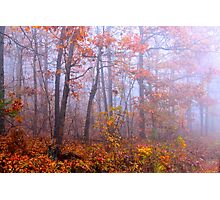 Ozark Tranquility Photographic Print