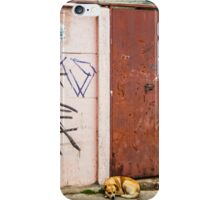 The Dog's Door iPhone Case/Skin