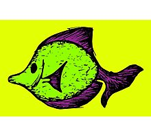 Goofy Fish Photographic Print