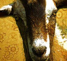 The Golden Goat Sticker