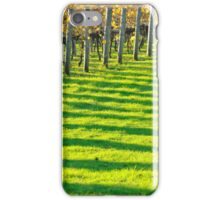vineyard bars iPhone Case/Skin