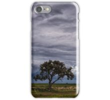 A Lone Tree Against the Storm iPhone Case/Skin