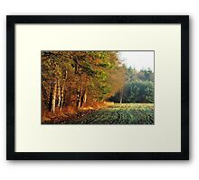 The first kiss of the morning sun Framed Print