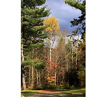 Country Road ~ Take Me Home Photographic Print