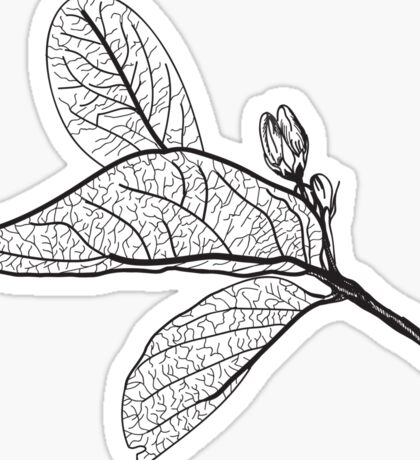 Leaves contours on white background Sticker