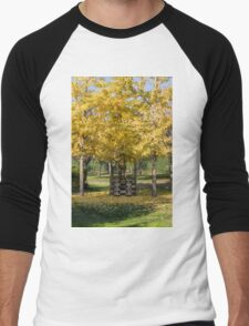 tree and well in the park in autumn Men's Baseball ¾ T-Shirt