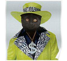Pimp Cat Poster