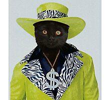Pimp Cat Photographic Print