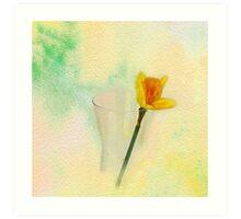 Narcissus yellow Art Print