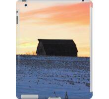 Grand Panorama iPad Case/Skin