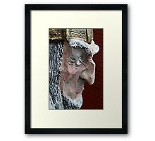 demon face Framed Print