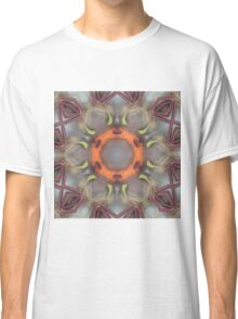 Beetroot and Carrot Mix Classic T-Shirt