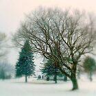 Winter's Face ! by Elfriede Fulda