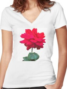 Single red rose flower, isolated on white background Women's Fitted V-Neck T-Shirt