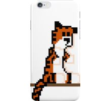 Pixel Hobbes iPhone Case/Skin