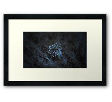 The core, panoramic version Framed Print