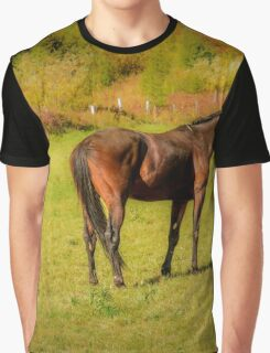Horses in Mabou Graphic T-Shirt