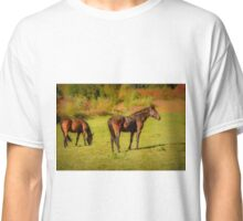 Horses in Mabou Classic T-Shirt