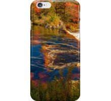 Liscombe Falls iPhone Case/Skin