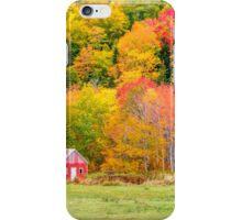 Autumn Colors Near Lake Ainslie  iPhone Case/Skin