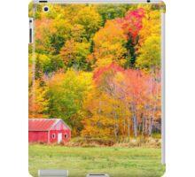 Autumn Colors Near Lake Ainslie  iPad Case/Skin