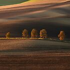 Postacrd from Moravia by JBlaminsky