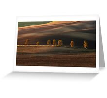 Postacrd from Moravia Greeting Card