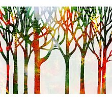 Watercolor Splashes Forest Silhouette Fall Photographic Print