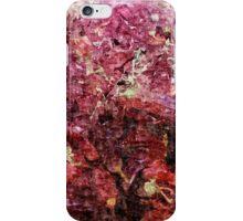 Spice Market in Hatzor iPhone Case/Skin