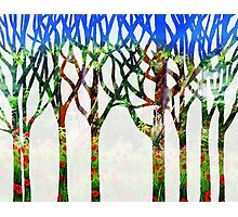 Watercolor Splashes Forest Silhouette Summer Photographic Print