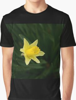 Narcissus Daffodil and leaves Graphic T-Shirt