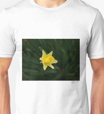 Narcissus Daffodil and leaves Unisex T-Shirt