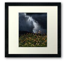 4123 Framed Print