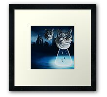 Alien kitten Framed Print