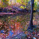 Confetti downstream by MarianBendeth
