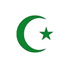 Star and Crescent (GREEN) by Omar Dakhane