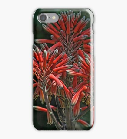 Aloe Plant Blossom  iPhone Case/Skin
