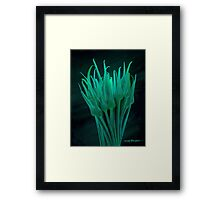 Garlic Scapes Painting #1 Framed Print