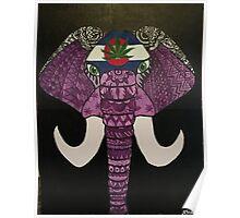colorado elephant Poster