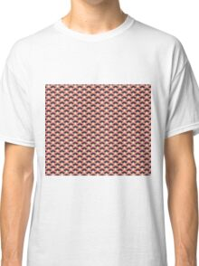 Autumn Dawn Classic T-Shirt