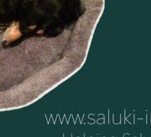 Saluki Imprint Sticker